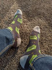 Meraki Community socks (feet not included)