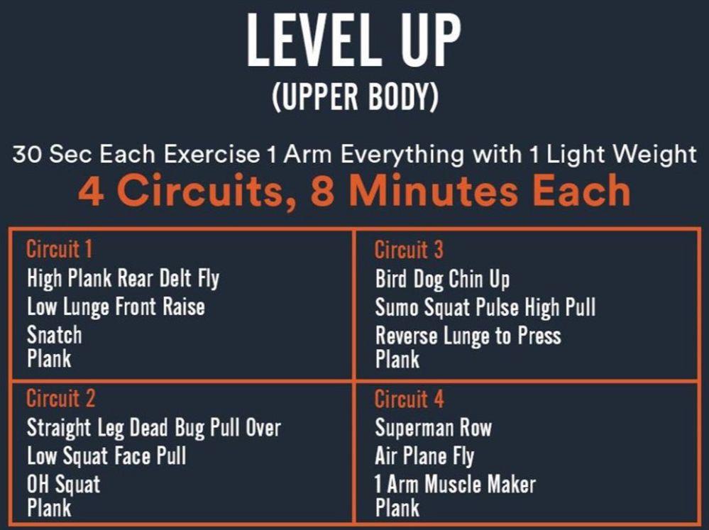 Level -up-upper -boddy.JPG