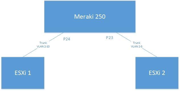 Trunk with Meraki.jpg