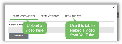 Step 2. Upload your video directly or embed one from YouTube