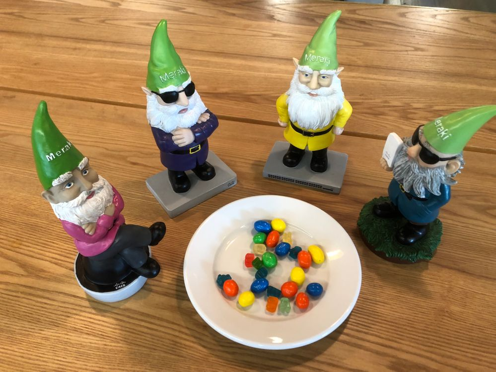 Gnome picnic! They seem to like the sweet treats