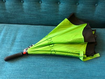 Meraki umbrella - folded