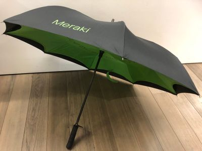 Meraki umbrella - unfolded
