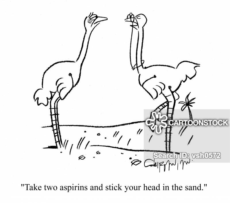 medical-ostrich-bird-head_in_sand-aspirin-pill-vsh0572_low[1].jpg