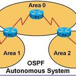 OSPF71
